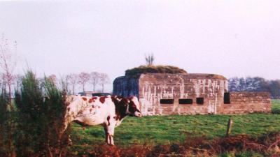 Duitse bunkers definitief beschermd als monument. -