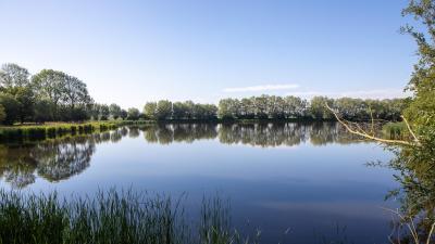 Rechtzetting: Assenede maakt wel degelijk werk van hemelwaterplan - Kreek