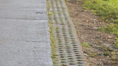 Aanleg doorgroeitegels Poeldijkstraat -