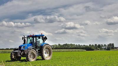 Landbouw in Assenede